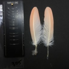 Flamingo Wing Covert Pair #305